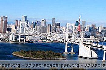 25世界上最大的城市