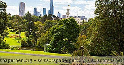 Austrálie Co Dělat: Královské Botanické Zahrady Victoria