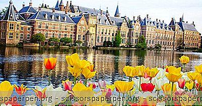 Alankomaat Käyntikohteet: Haag