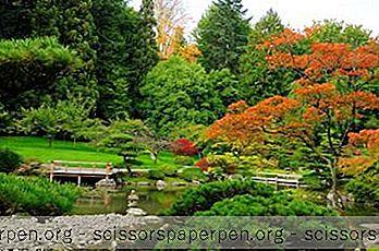 Dingen Om Te Doen In Seattle, Wa: Seattle Japanese Garden