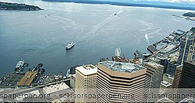 Seattle, Wa: Observatoire Du Sky View