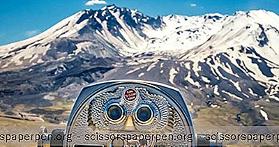 Stato Di Washington Cose Da Fare: Mount Saint Helens Visitor Centre