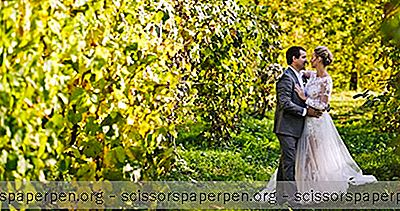 Hochzeitsorte In Michigan: Ciccone Vineyard & Winery