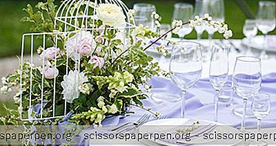 Minnesota Wedding Venues: Garten Marketplatz Stauden