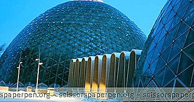 Ting At Lave I Milwaukee, Wi: Mitchell Park Conservatory (The Domes)